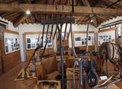 Museo del Bosco - Sovicille