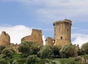 Torre Castello Bruca - Ascea