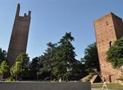 Torre Dona' - Rovigo