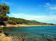 Spiaggia Punta Licosa - Castellabate