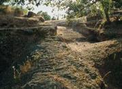 La città archeologica di Musarna - Viterbo