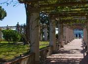 Museo di Villa Arbusto - Ischia