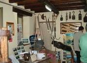 Museo della Tonnara - Milazzo