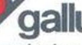 Agenzia Viaggi Gallusi Srl