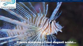 Acquario di Cala Gonone - >Cala Gonone