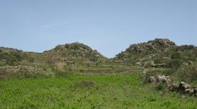Monte Filo dell'Arpa e Sciara dell'Arpa