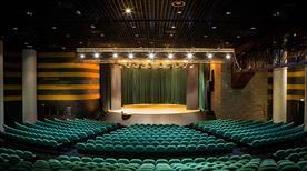 Auditorium del Massimo cento congressi