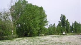 Area golenale del fiume Reno