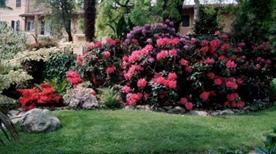 Giardino botanico di Villa Bricherasio