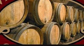 Abruzzo Vini S. R. L. - LG Internazional