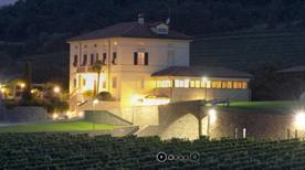 Az.Ag. Mario Schiopetto S.S. - >Capriva del Friuli