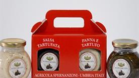 Azienda Agricola di Massimo Spernanzoni