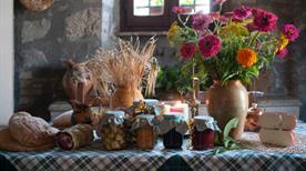 Azienda Agricola Fattoria la Cacciata di Belcapo C. - >Orvieto