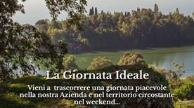 Azienda Agricola S. Anna