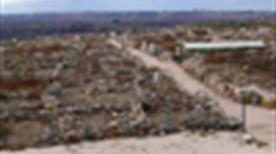 Area archeologica di Canne della Battaglia