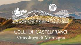 Cantina Colli Di Castelfranci Srl