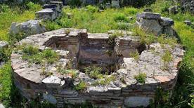 Arch Cornus