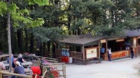 Skypark - Parco Avventura