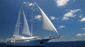 Seafari Adventures