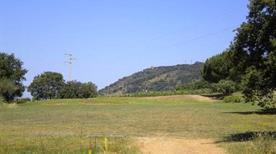 Golf Club San Michele