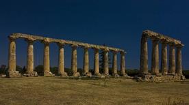 Metaponto - Tempio Greco
