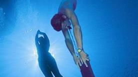 Bluenose, Diving & Surroundings