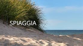 Frontemare Beach - >Camerota