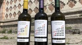 Goretti Vini Produzione Agricola (S.R.L.) - >Pila Umbra