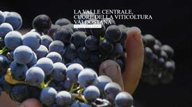 MAISON ANSELMET - >Villeneuve
