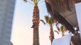 Shada Beach Food Club - >Civitanova Marche