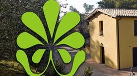 Societa' Agricola Attone - >Bevagna