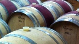 Sportoletti Winery - >Spello