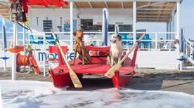 Tequila Dog Beach - >Montalto di Castro