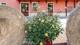 AGRITURISMO LA MERIDIANA  - >Guidonia