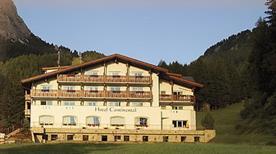 Hotel Continetal - >Selva di Val Gardena