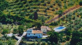 Agriturismo Montereggi - >Fiesole