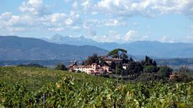 San Gervasio - >Palaia