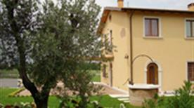 Rivacolta - >Verona