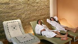 Hotel Terme Firenze - >Abano Terme
