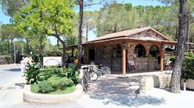 Arcobaleno Camping - >Marina di Bibbona