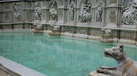 Fonte Gaia il Campo - >Siena