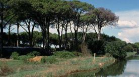 Parco di San Rossore - >Pisa
