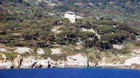 Torre del Lazzaretto - >Giglio Isola