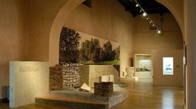 Museo Archeologico Nazionale della Basilicata - >Potenza