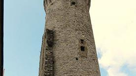 Torre di Guinigi - >Ortonovo