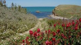 Punta Aderci - >Vasto