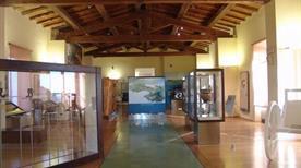 Museo Archeologico del Territorio di Populonia - >Populonia