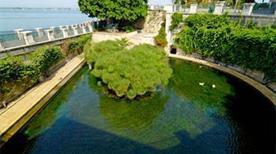 Fonte Aretusa Isola di Ortigia - >Siracusa