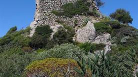 Castello Gioiosa Guardia  - >Villamassargia