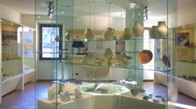 Museo della Regina - >Cattolica